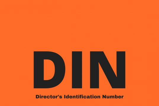 All about Director's Identification Number
