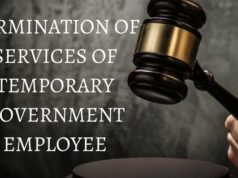 TERMINATION OF SERVICES OF TEMPORARY GOVERNMENT EMPLOYEE