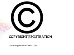 ADVANTAGES OF FILING A COPYRIGHT REGISTRATION