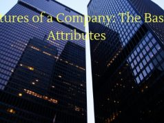Features of a Company: The Basic Attributes