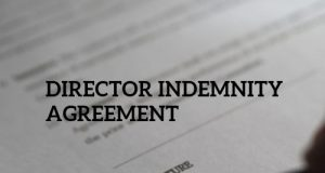 Director Indemnity Agreement