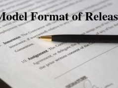 Model Format of Release