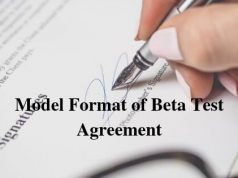 Model Format of Beta Test Agreement