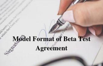 Model Format of Beta Test Agreement