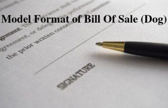 Model Format of Bill Of Sale (Dog)